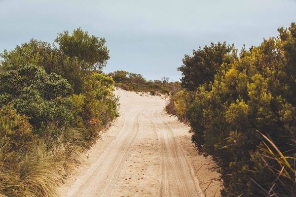 dirt_road_road_journey