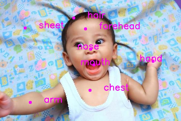 baby_annotated