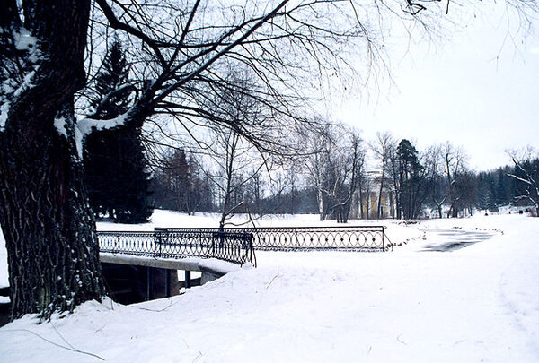 pavlovsk_railing_of_bridge_yellow_palace_winter