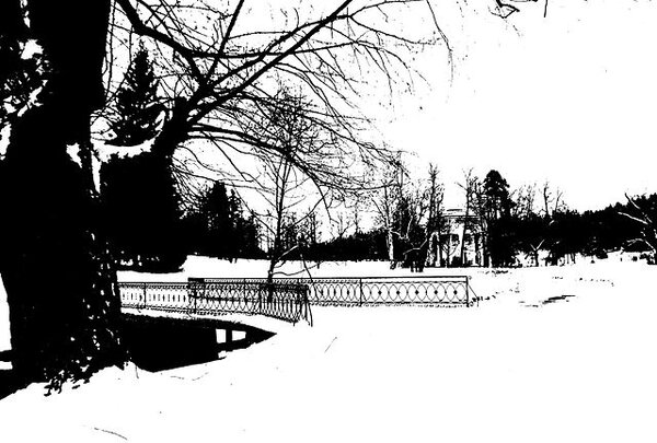 pavlovsk_railing_of_bridge_yellow_palace_winter_bw_threshold