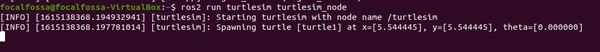 3-turtle-poseJPG