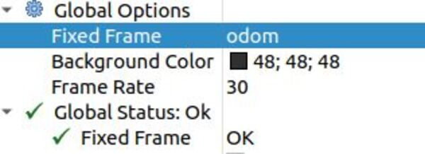 22-fixed-frame-to-odom